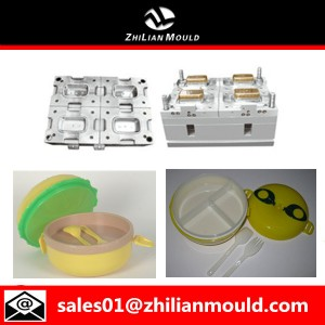 plastic lunch food box mold