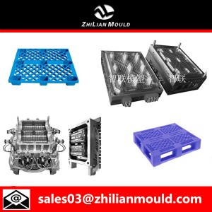 China Pallt mold maker