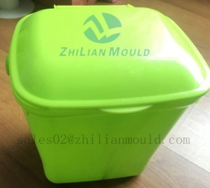 garbage bin  mould